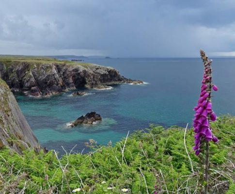 Trekking auf dem Pembrokeshire Coast Path